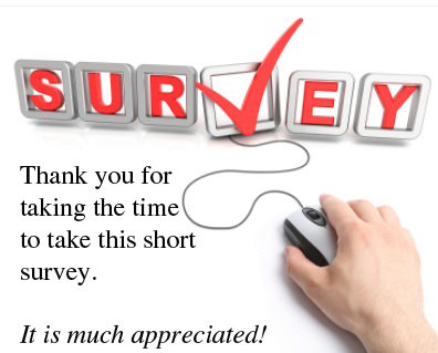Shadow & Light Magazine Survey